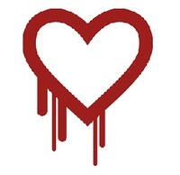 Heartbleed Bug Videokonferenz